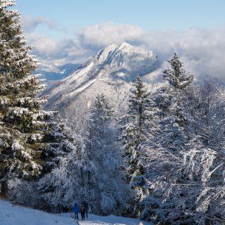 Winter sunny day at Velika planina