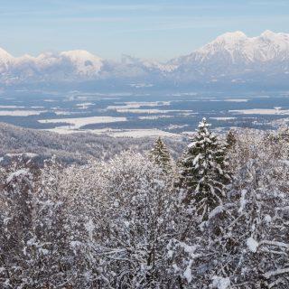 Katarina in Winter